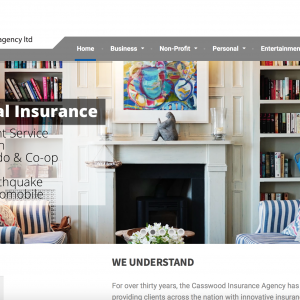 casswood insurance - Interior Web Design